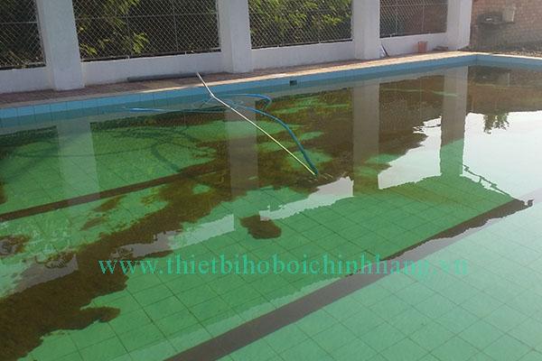 Xử lý nước hồ bơi nhanh chóng an toàn hiệu quả 100%